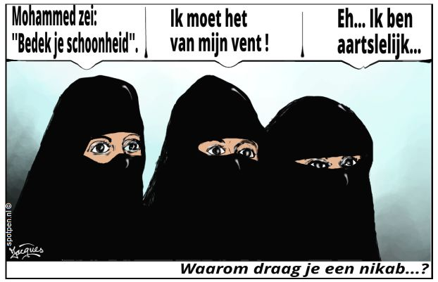 boerka nikab cartoon
