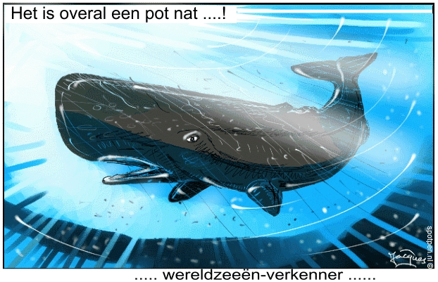 potvis walvis cartoon