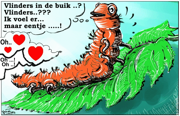 Vinders in de buik cartoon