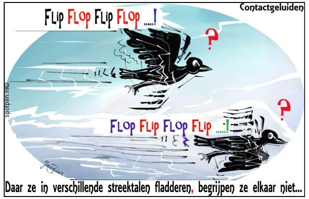 vogelgeluiden  cartoon