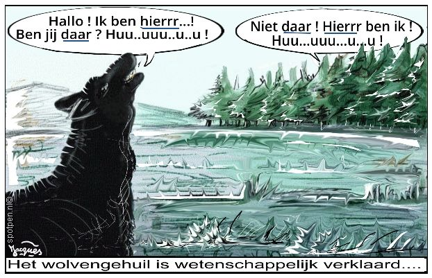wolf  wolven cartoon